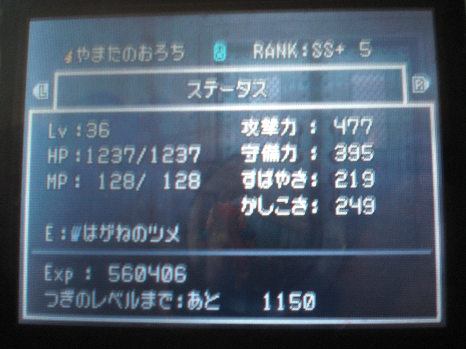 CIMG0249.JPG